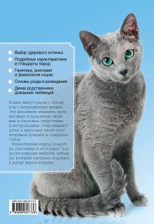 Обложка сзади Все породы кошек Ольга Замятина