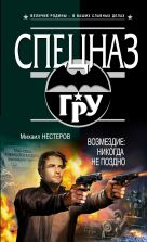 Нестеров М.П. - Возмездие: никогда не поздно' обложка книги
