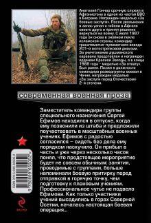Обложка сзади Пепел победы Анатолий Гончар