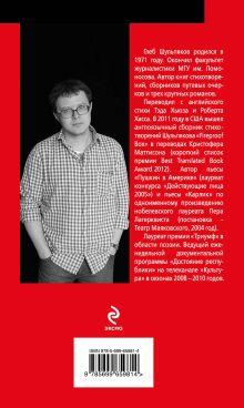 Обложка сзади Музей имени Данте Глеб Шульпяков