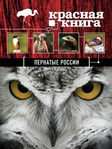 Красная книга. Пернатые России обложка книги