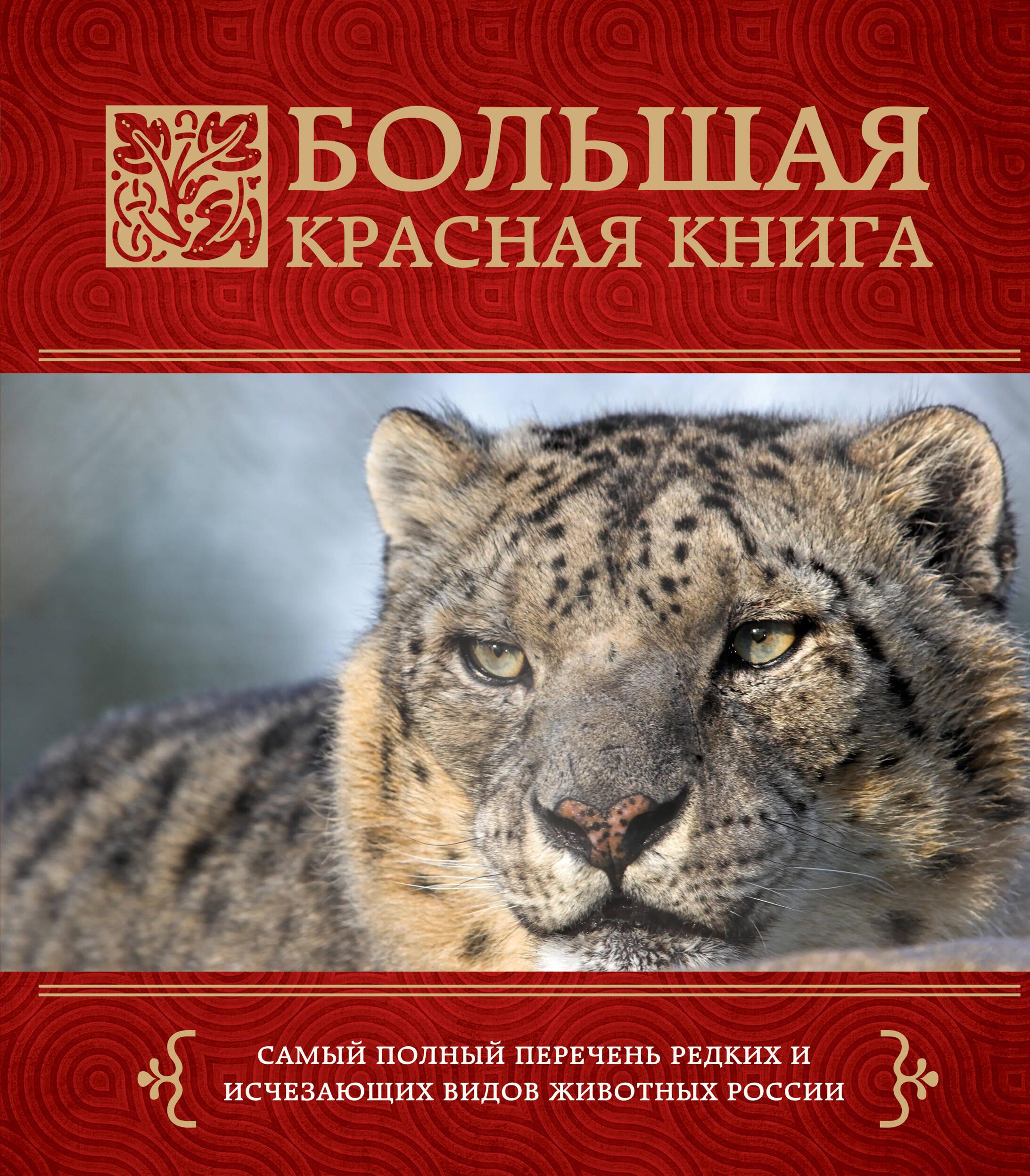 Книга россии картинки