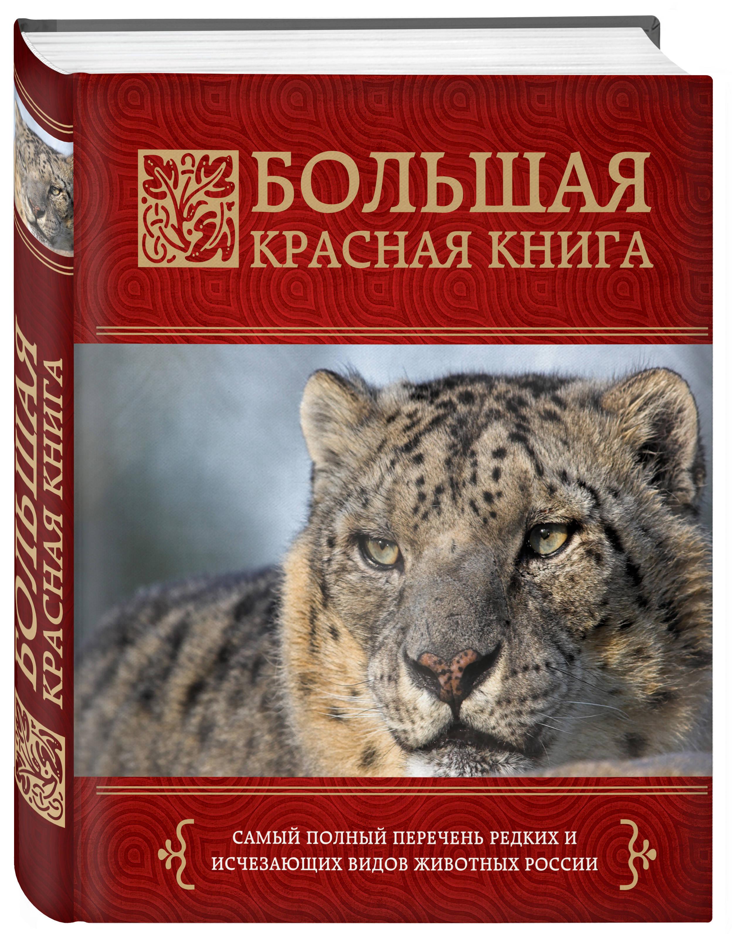 Скалдина О.В., Слиж Е.А. Большая красная книга бологова в моя большая книга о животных 1000 фотографий