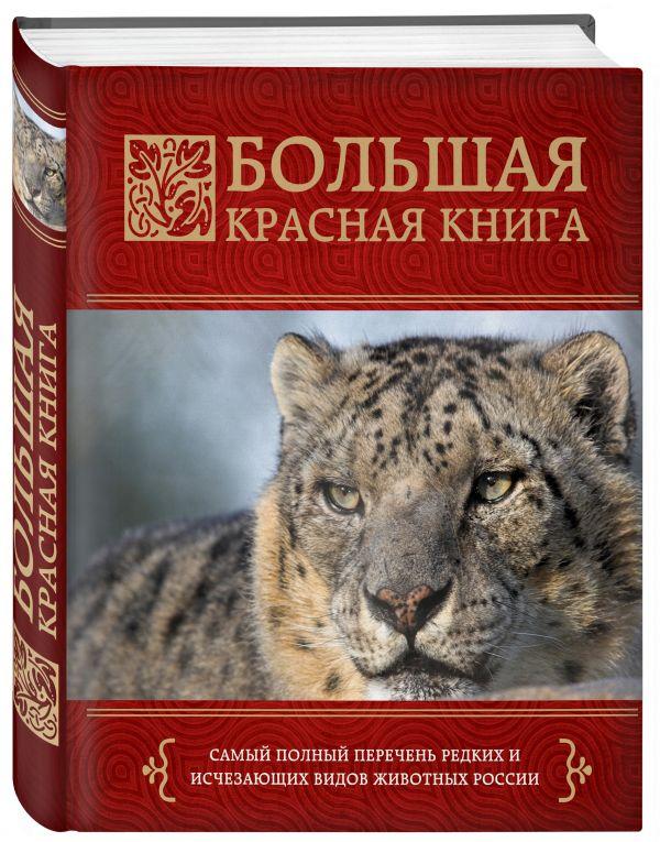 Большая красная книга Скалдина О.В., Слиж Е.А.