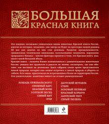 Обложка сзади Большая красная книга Оксана Скалдина, Евгений Слиж