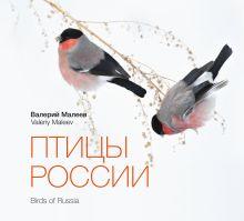Малеев В. - Птицы России обложка книги