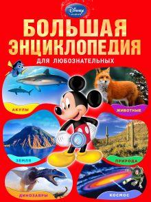 - Большая энциклопедия для любознательных (большой формат) обложка книги
