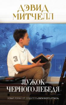 Лужок Черного Лебедя обложка книги