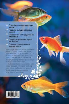 Обложка сзади Аквариумные рыбки Ярошевич А.В.