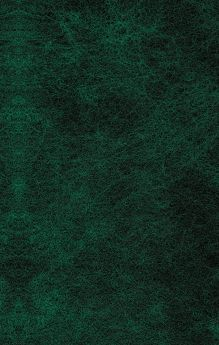 Обложка сзади Пышка Ги де Мопассан