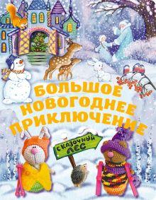 - 5+ Большое новогоднее приключение (с окошками) (н.оф.) + письмо Деду Морозу обложка книги