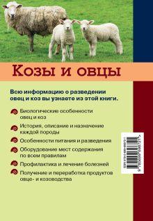 Обложка сзади Козы и овцы Плотникова Елена Владимировна