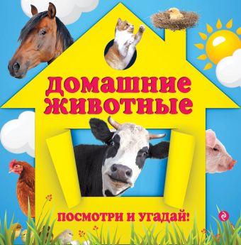Домашние животные Прищеп А.А.
