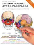 Анатомия человека: атлас-раскраска от ЭКСМО