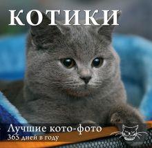 - Календарь. Котики: Лучшие кото-фото. 365 дней в году (оформление 1) обложка книги