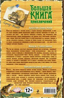 Обложка сзади Большая книга приключений. Мое лучшее лето Елена Нестерина