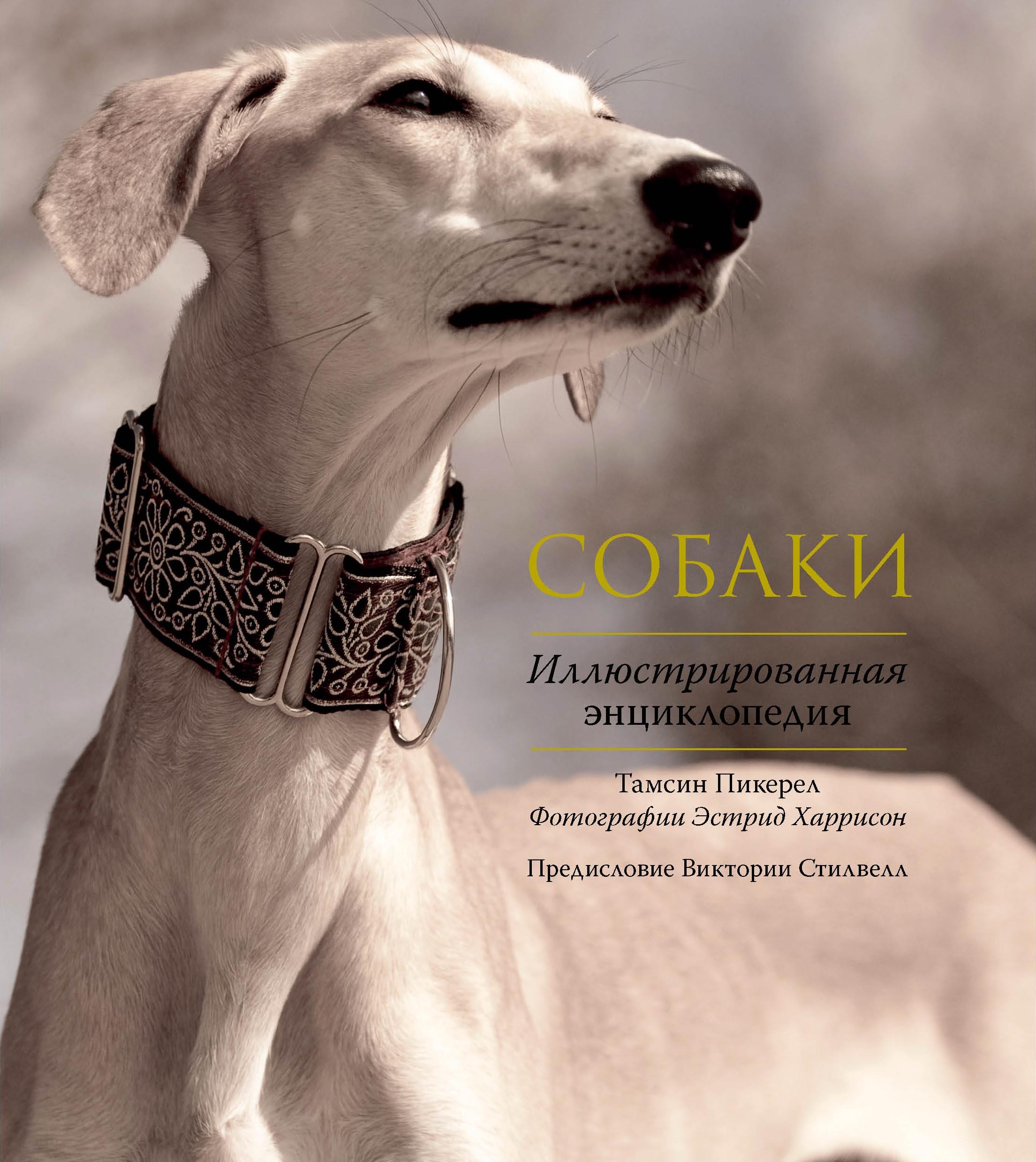 Собаки. Иллюстрированная энциклопедия ( Пикерел Т.  )