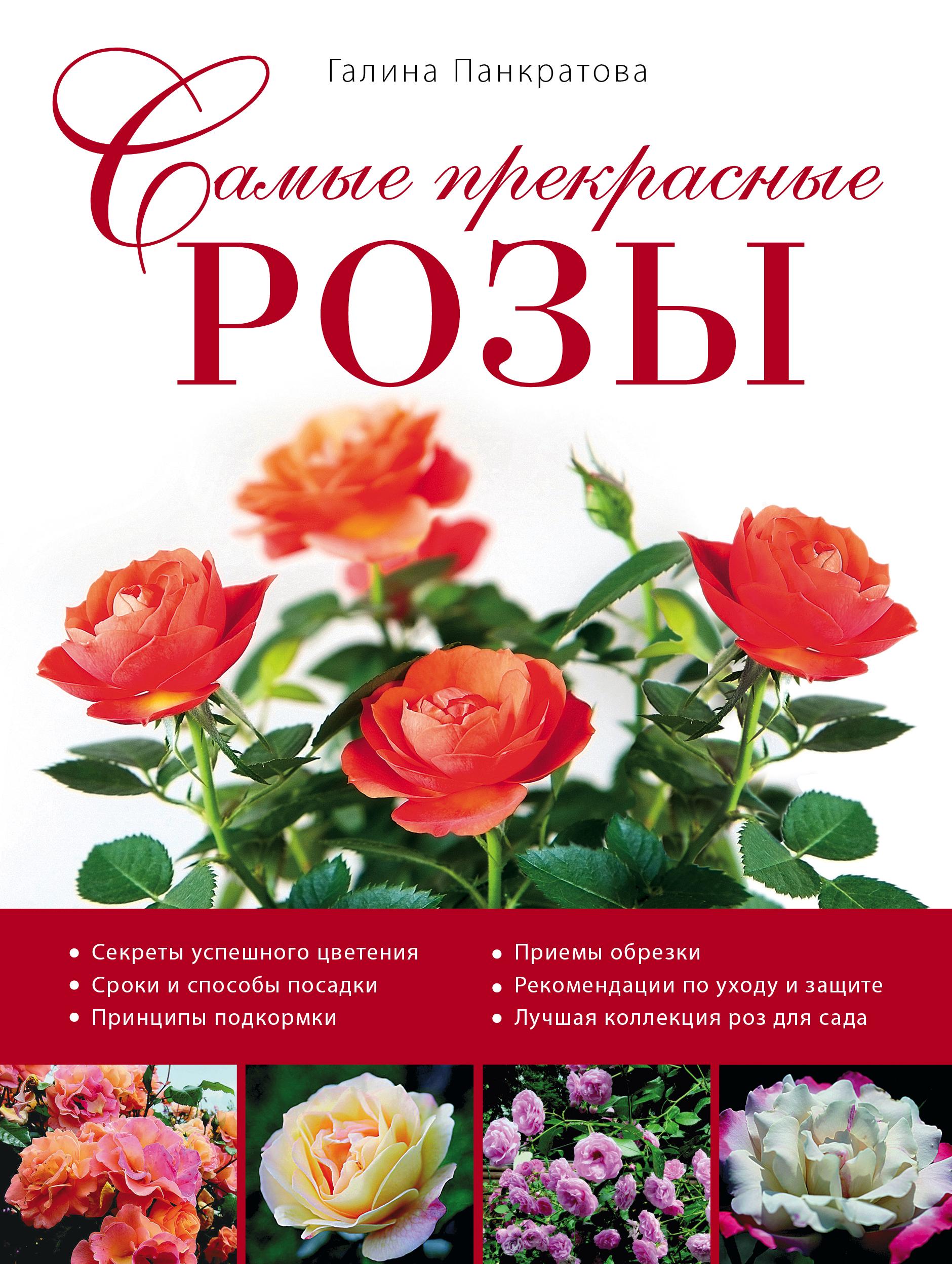 Самые прекрасные розы (Роскошный сад) от book24.ru