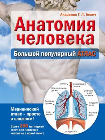 Анатомия человека: большой популярный атлас