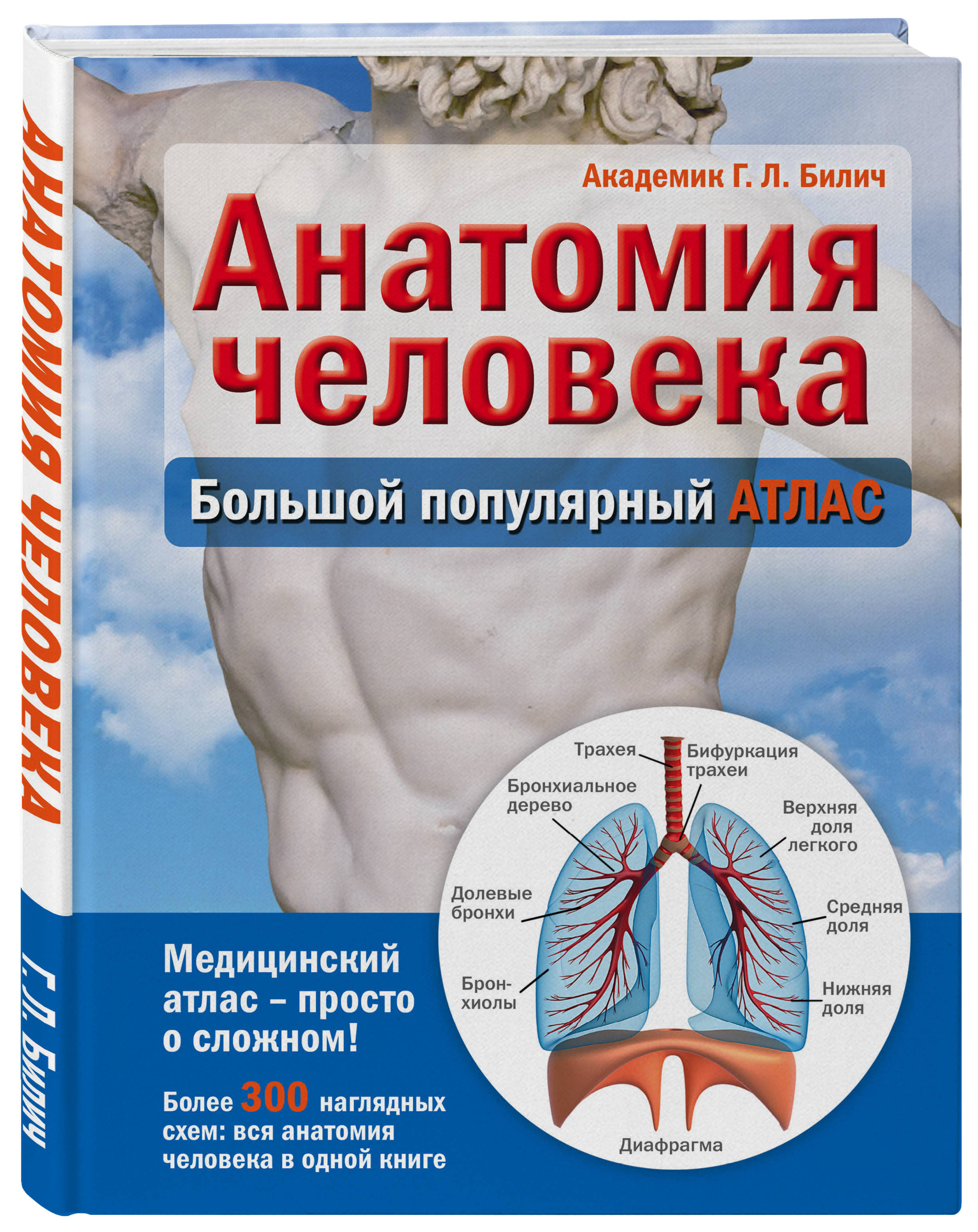 Билич Г. Анатомия человека: большой популярный атлас билич г л зигалова е ю анатомия человека русско латинский атлас
