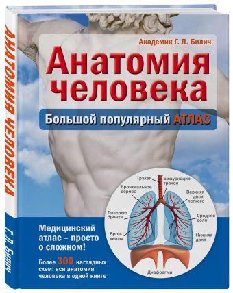 Анатомия человека: большой популярный атлас Билич Г.