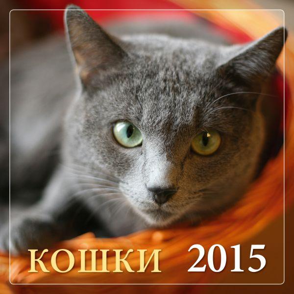 Кошки 2015
