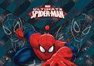 Пластиковая папка-конверт, с застежкой. Толщина - 0,15 мм. Печать на корпусе - полноцветная, офсетная. Размер 23,5 х 33 х 0,5 см Spider-man Classic