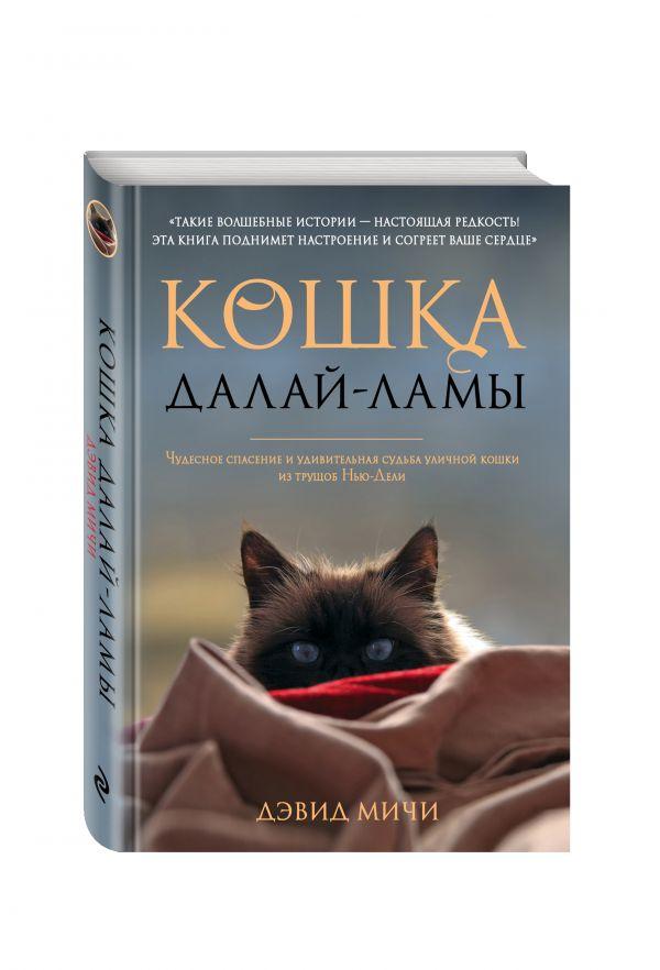 Кошка Далай-Ламы. Чудесное спасение и удивительная судьба уличной кошки из трущоб Нью-Дели Мичи Д.