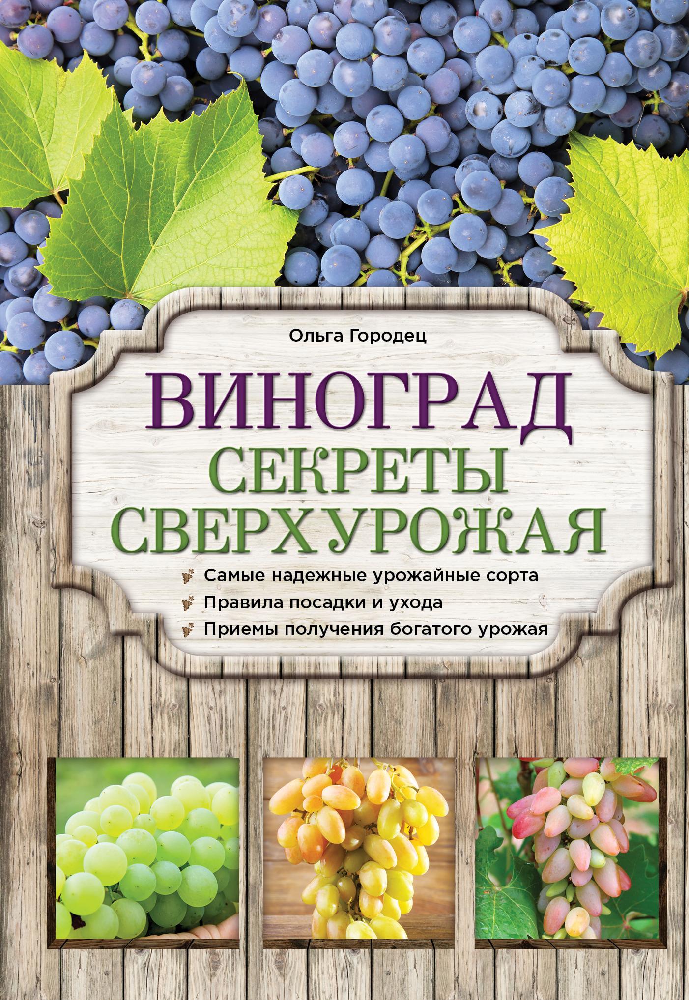 Городец О.В. Виноград. Секреты сверхурожая