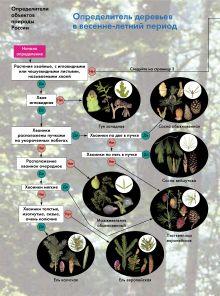 Боголюбов А.С. - Определитель деревьев в весенне-летний период. 6–11 классы. Атлас-определитель обложка книги