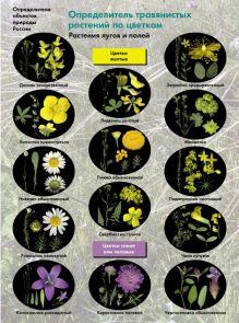БоголюбовА.С. - Определитель травянистых растений по цветкам. Растения лугов и полей. 6-11классы. Буклет. обложка книги