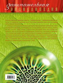 Обложка сзади Удивительный микроскоп: иллюстрированный путеводитель Оксана Мазур