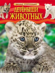- Детеныши животных. Детская энциклопедия обложка книги