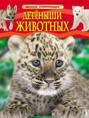 Детеныши животных. Детская энциклопедия