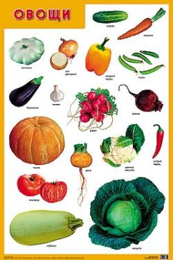 ПЛ Овощи
