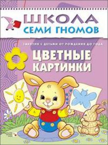 Дарья Денисова - ШСГ Первый год обучения. Цветные картинки. обложка книги