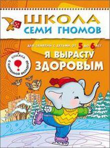 Дарья Денисова - ШСГ Шестой год обучения. Я вырасту здоровым. обложка книги