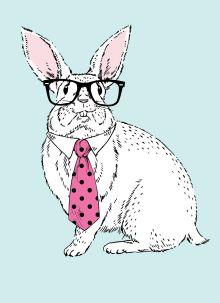 - Блокнот для записей Кролик-ботаник (А6) обложка книги