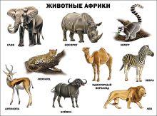 - Животные Африки (плакат) обложка книги