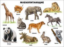 - Млекопитающие (плакат) обложка книги