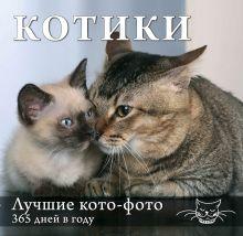 - Календарь. Котики: Лучшие кото-фото. 365 дней в году (оформление 2) обложка книги