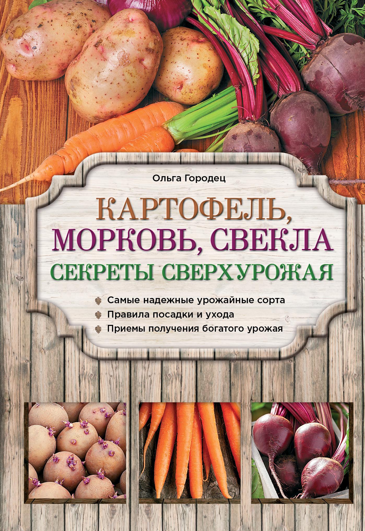 Городец О.В. Картофель, морковь, свекла. Секреты сверхурожая конструктор bauer стройка 366