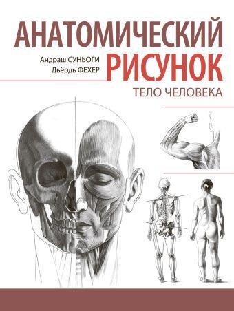 Анатомический рисунок. Тело человека Суньоги А.