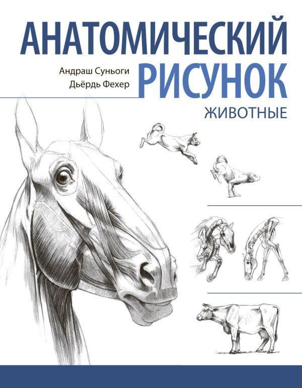 Анатомический рисунок. Животные Суньоги А.