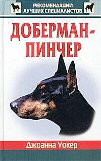 Доберман пинчер Уокер