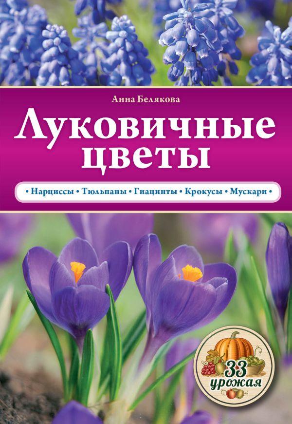 Луковичные цветы Белякова А.В.