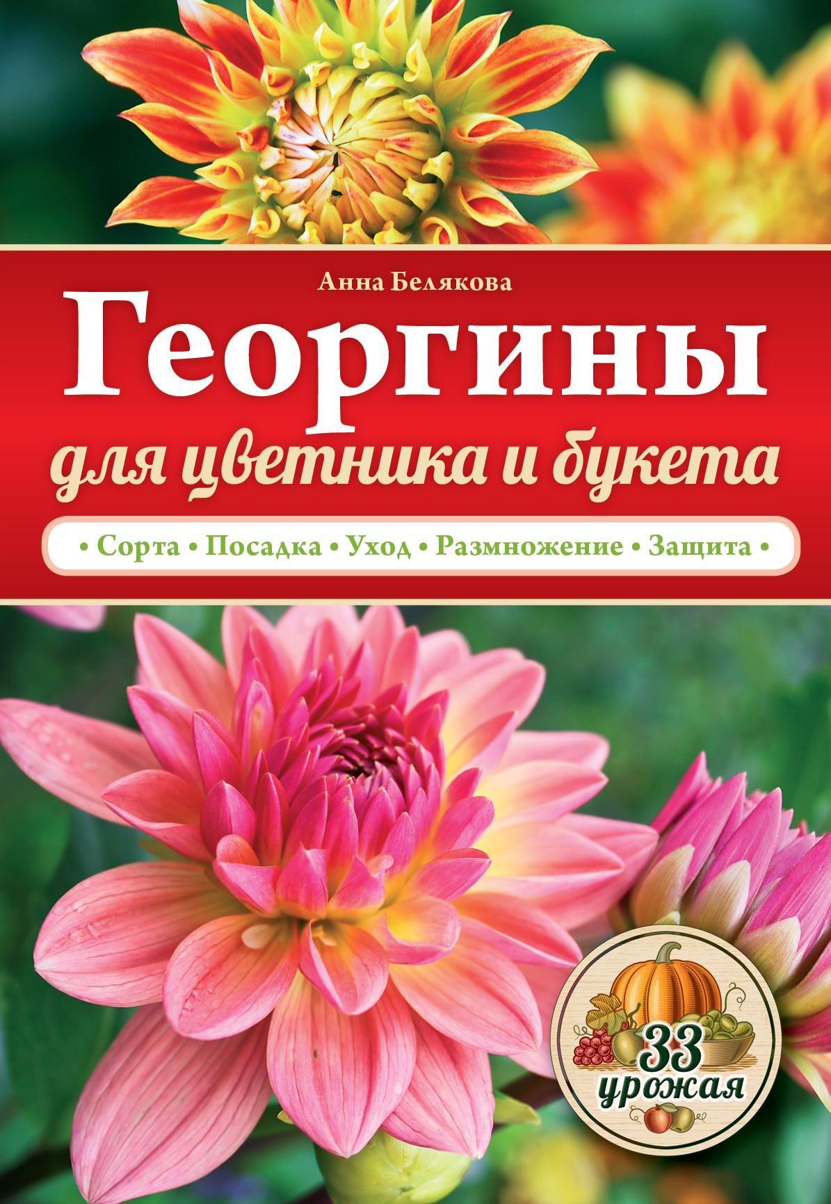 Георгины для цветника и букета ( Белякова А.В.  )