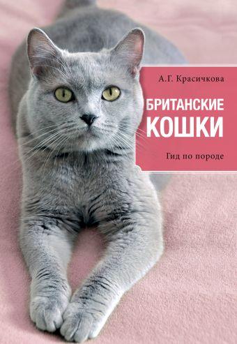 Британские кошки Анастасия Геннадьевна Красичкова