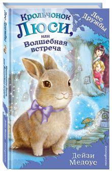 Медоус Д. - Крольчонок Люси, или Волшебная встреча обложка книги