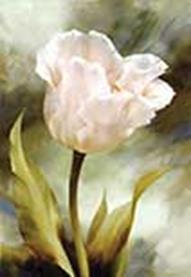 - Наборы для вышивания в формате 3D. Белый тюльпан (7040-3D ) обложка книги